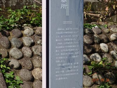 utsunomiya_013.jpg