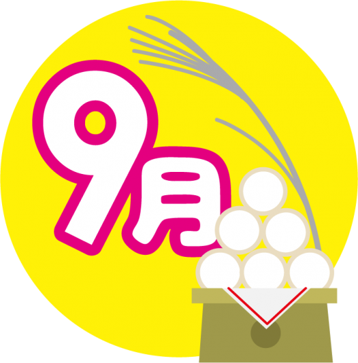 9moji-522x530.png