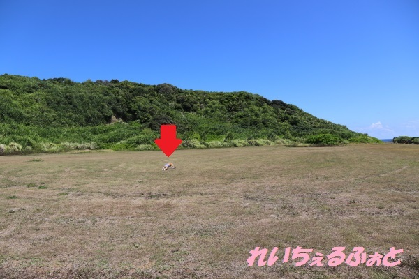 DPP_13688.jpg