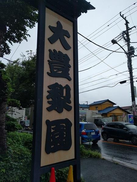 雨のカピバラと大町梨街道