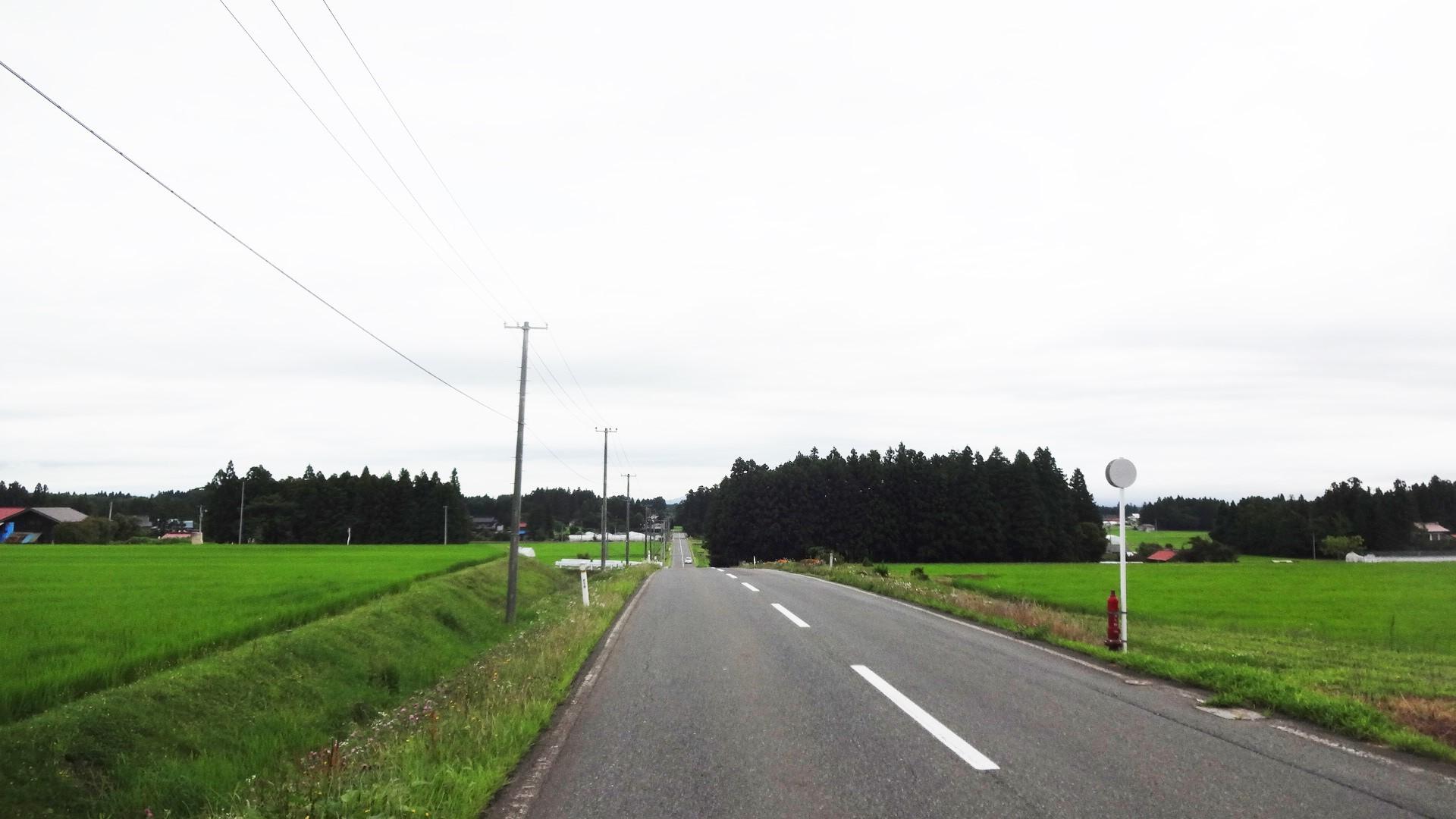 DSC03917.jpg