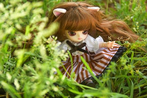 オビツ11ボディに替えて、猫耳をつけた、グルーヴ、リトルダルプラス、ちびRISAのマオ。新緑の公園で、とってもお嬢様っぽい。
