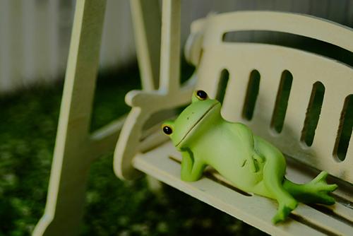 ツバキアキラが撮った、カエルのコポーシリーズ・Mr.Frog。ひとやすみ、ひとやすみ。<br />