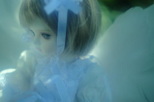 ROSEN LIED、Tuesday's child、通称・火曜子のチェルシー。天使の羽をつけて、森の中へ。