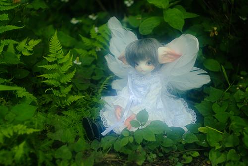 DOLLZONE・Miss Kittyのジーナ。白い大きな翼をつけて、天使になるはずが・・・