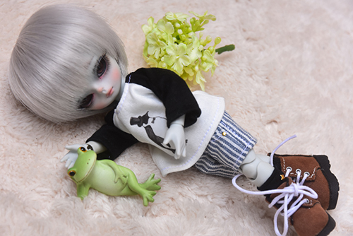 WITHDOLL、Happy Ending Story - Wolf Rudyのルディと、WITHDOLL、Halloween Limited Edition / Black Cat / Butler Pookyのキオ。カエルくんを見つけました。