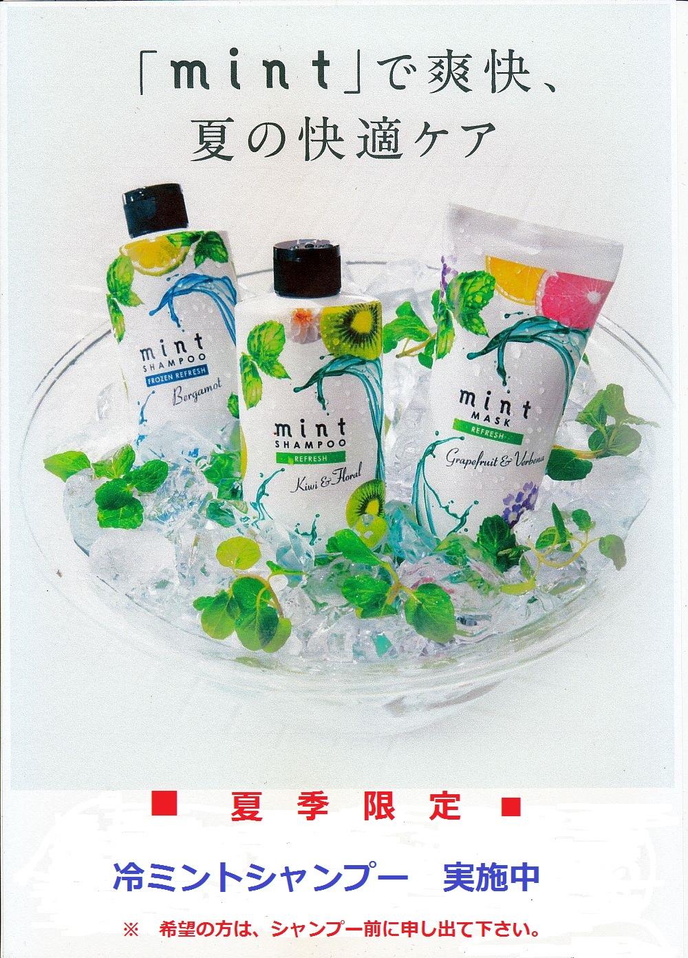 mint_shampoo.jpg