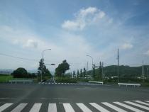IMGP4190.jpg
