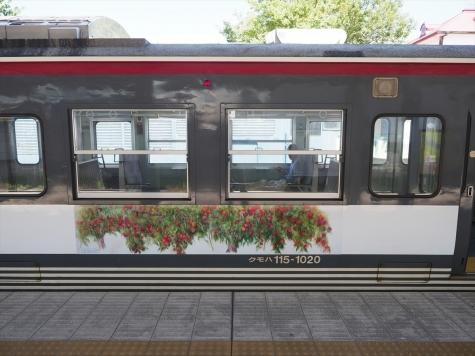 しなの鉄道 115系 電車 「イイヅナのリンゴ」ラッピング列車