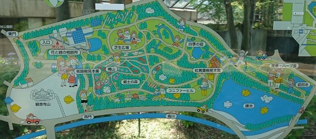 植物園170603