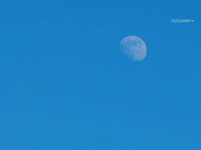 青空と月170803