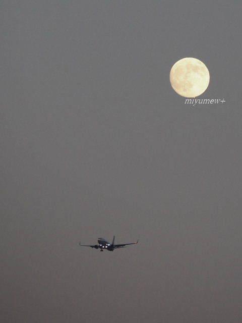 月と飛行機170806
