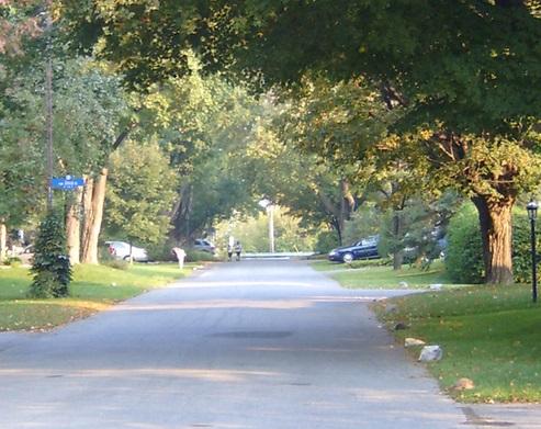 高級住宅街 区画整理 敷地面積