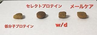 IMG-4091.jpg