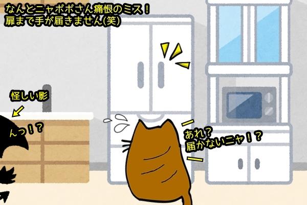 デブ猫ニャポポさん11