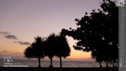 デスクトップカレンダー,8月,沖縄,壁紙,夕暮れ,海