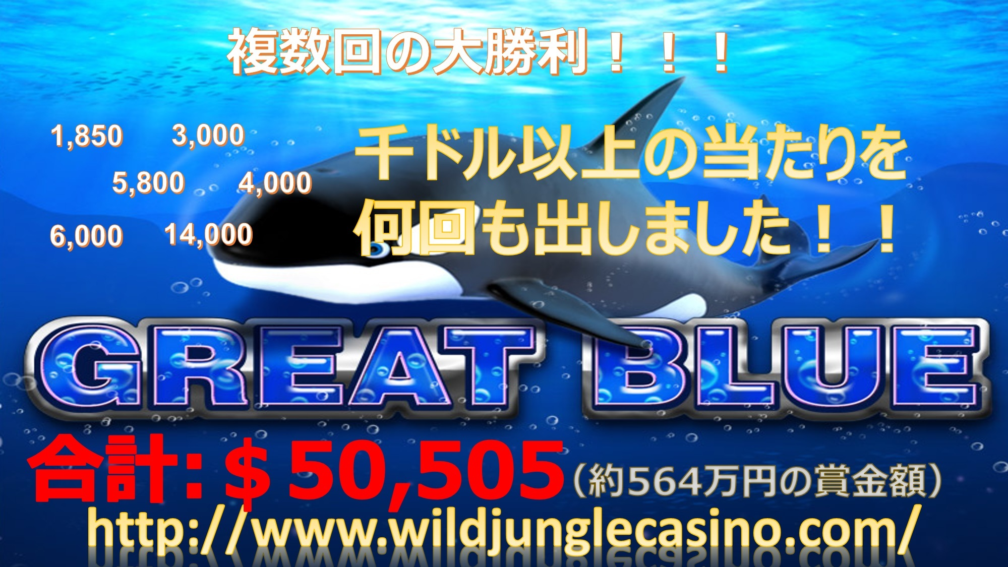 201709261834_great blue