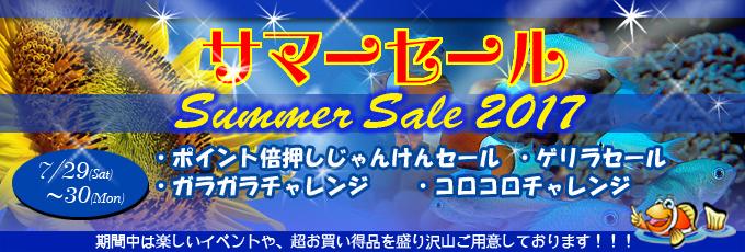banner_summer-d9b48.jpg