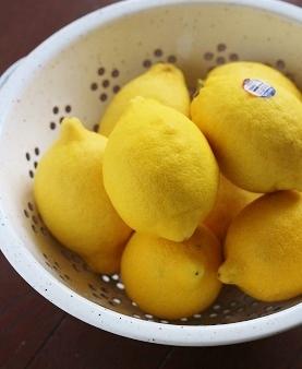 チリ産レモン1
