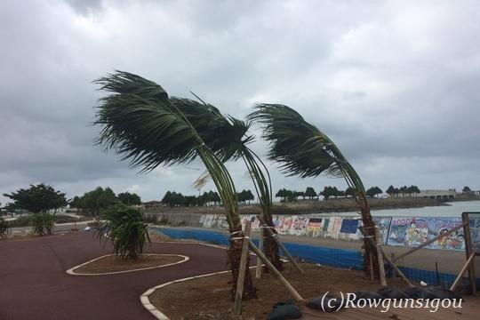 wind16m290917