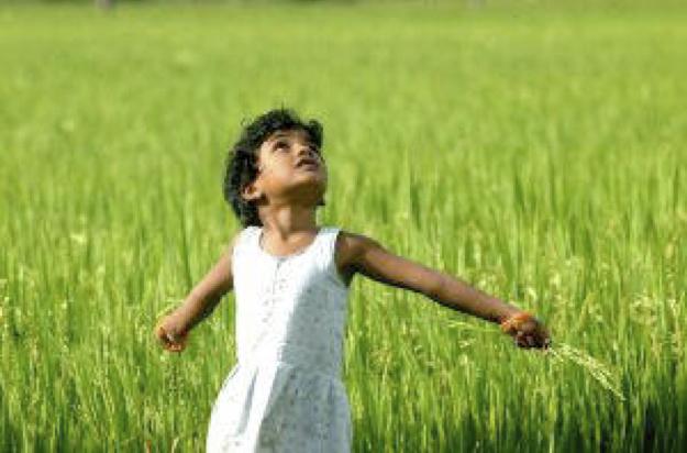 子供 自由