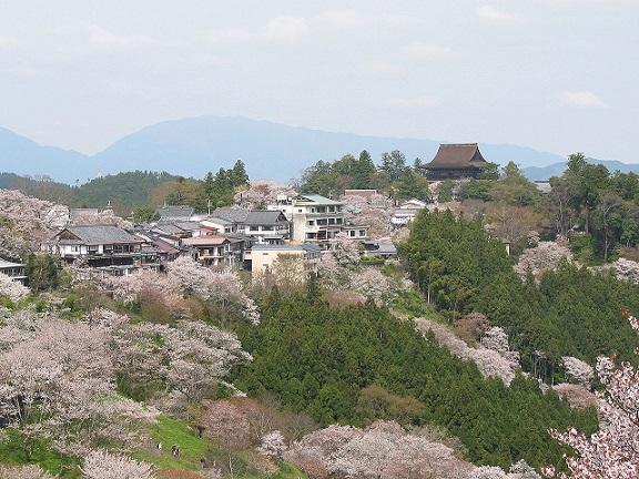 春の吉野山