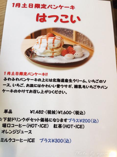 IMG_6755のコピー