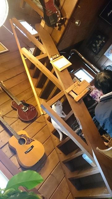 ギターとネコさん