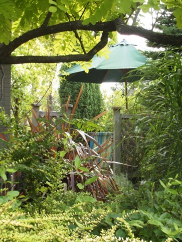 my-garden 021 (3)