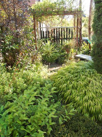 my-garden 060