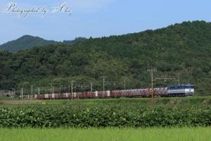 5087レ(=EF65-2063牽引)「JR貨物30周年」HM付