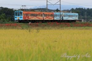 近江鉄道「鉄道むすめ」ラッピング