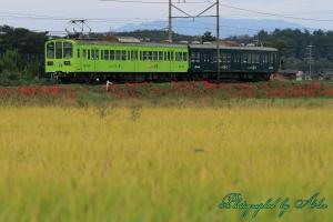 近江鉄道「お~いお茶」ラッピング