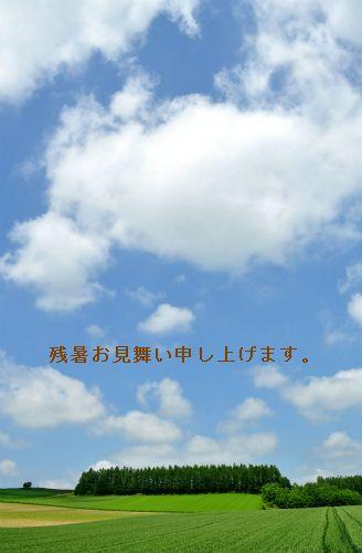 fdsf.jpg