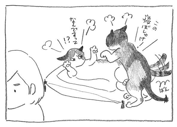 6-寝ぼしゅけ