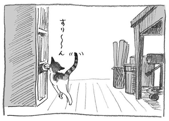 6-李子すりーん