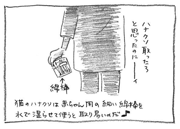 12-綿棒