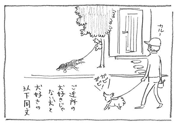 11-犬好きじゃない犬