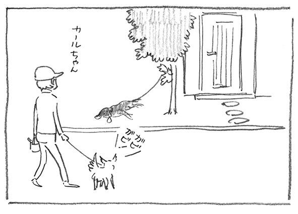 12-散歩おわり