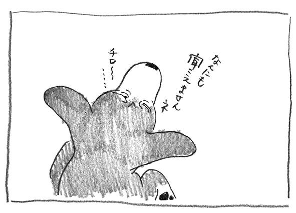 12-ちろ〜〜