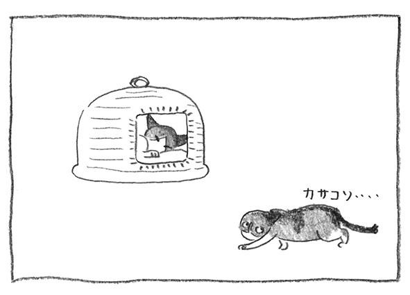 6-がぶカサコソ