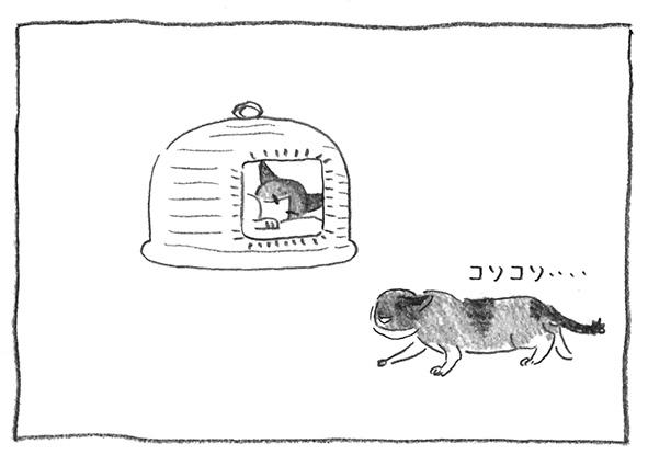 9-黒がぶ