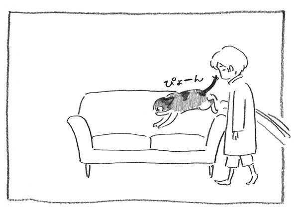 20-ぴょーん