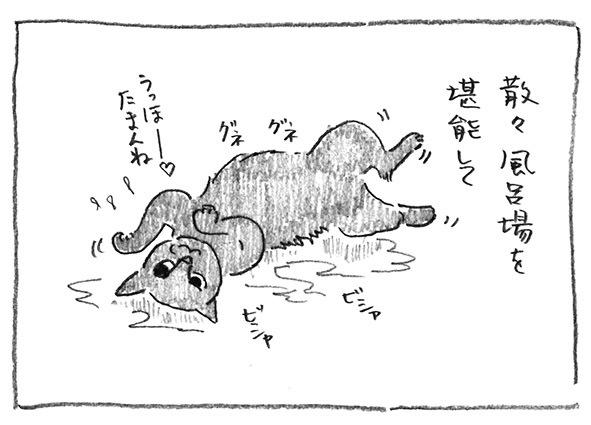4-風呂場堪能