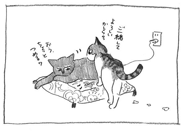 12-李子くる