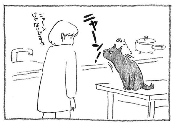 4-ニャーン
