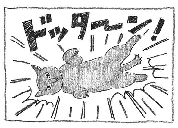 5-ドッターン