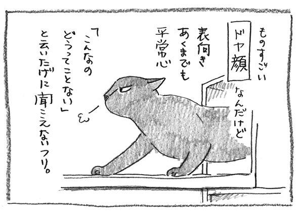 17-ドヤ顔
