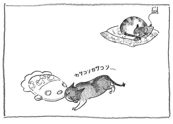 5-ガブ魂胆