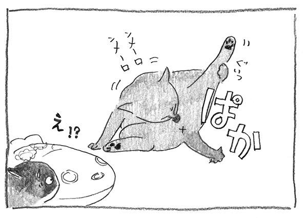 13-ぱか